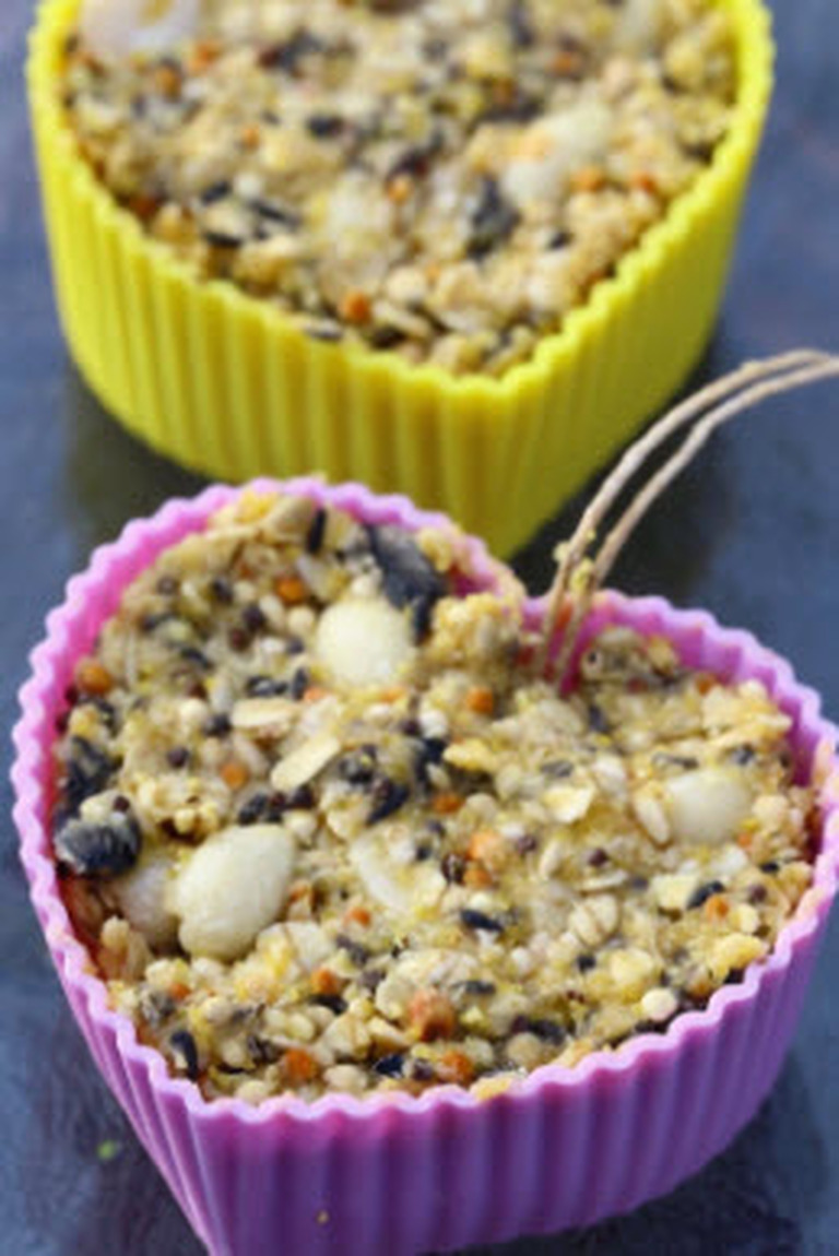 Suet cakes for feathered friends